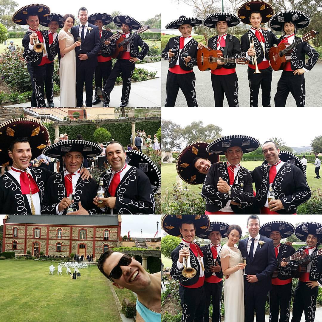 Wedding Chataeu Tanunda