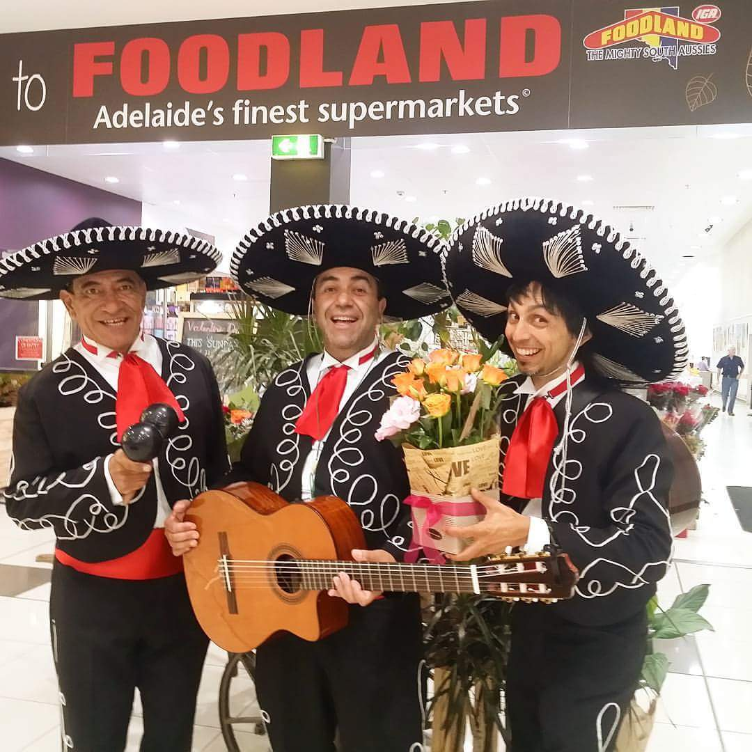Foodland Frewville and Pasadena, Adelaide Australia